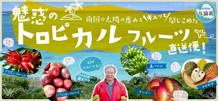 与論島トロピカルフルーツ