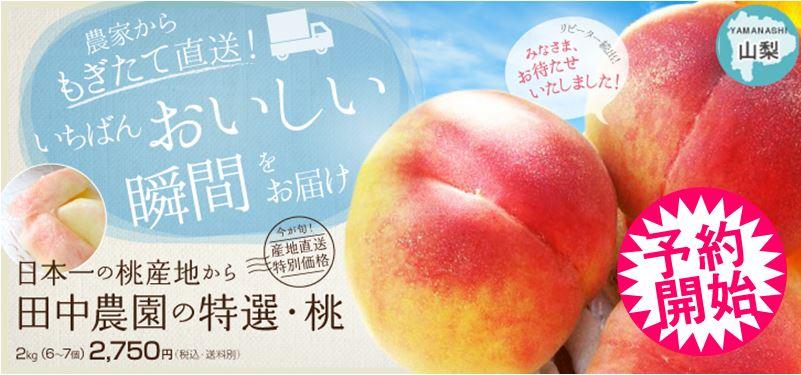 産地直送のあまーい桃